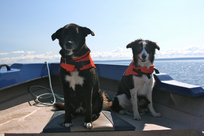 Jayce & Shep go for a boat ride (Aug 2010)