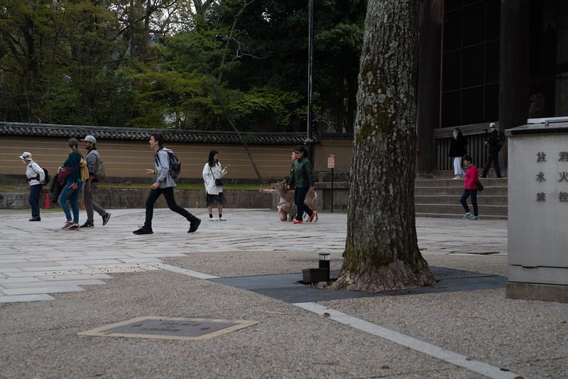 20190411-JapanTour-5033.jpg