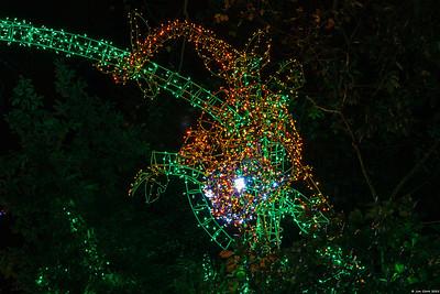 "Woodland Park Zoo ""Wild Lights"""
