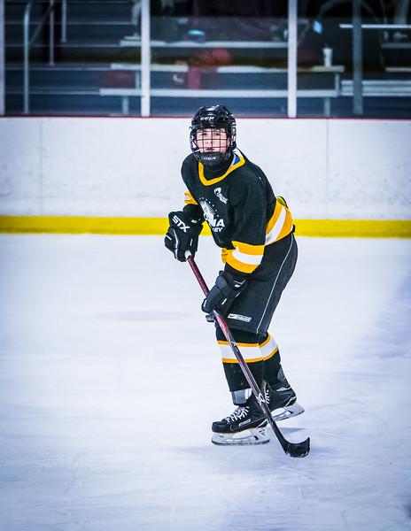 Bruins2-293.jpg