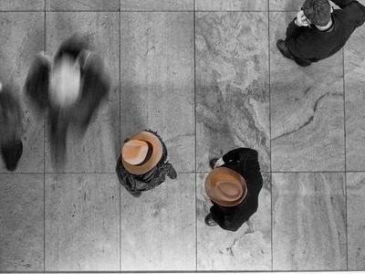 nikon cafe