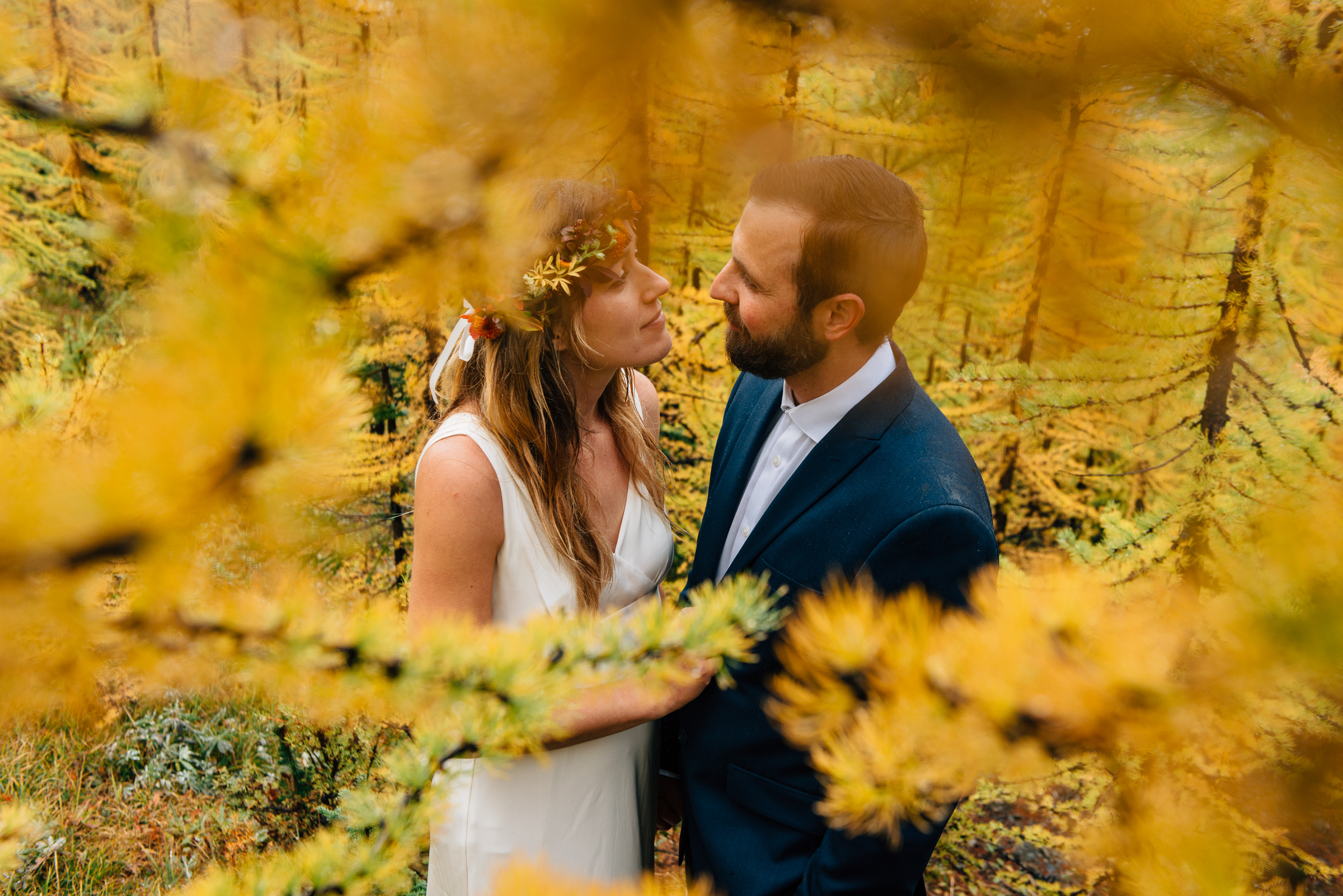 Manning Park Larch Forest wedding portraits
