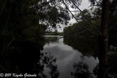 Cudgeon Lake