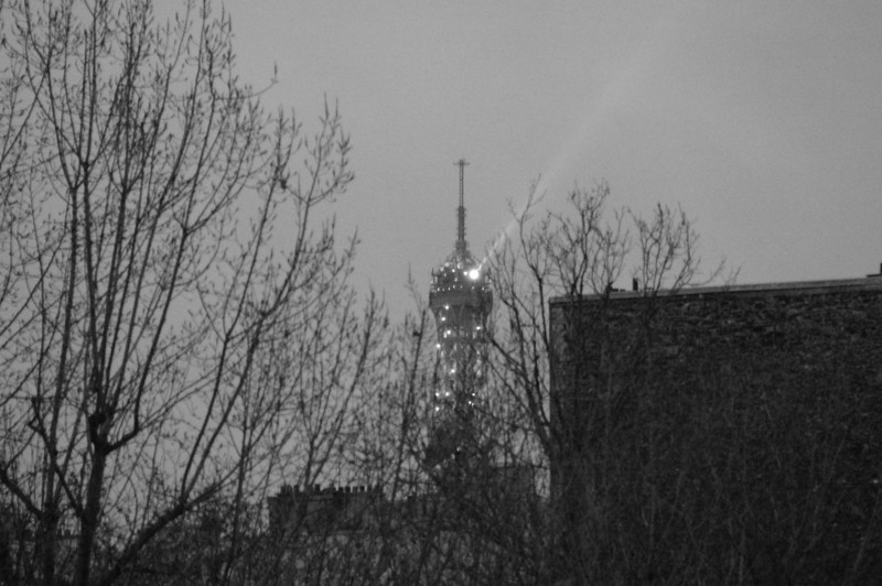The Eiffel Tower Light