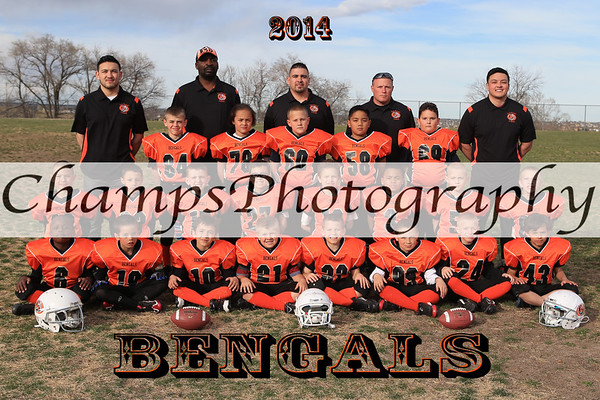 2014 Little League Football