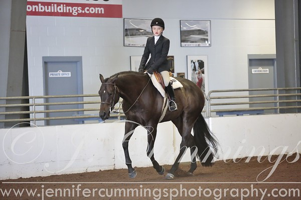 Classes 108-125 (Hunter Under Saddle and Equitation)