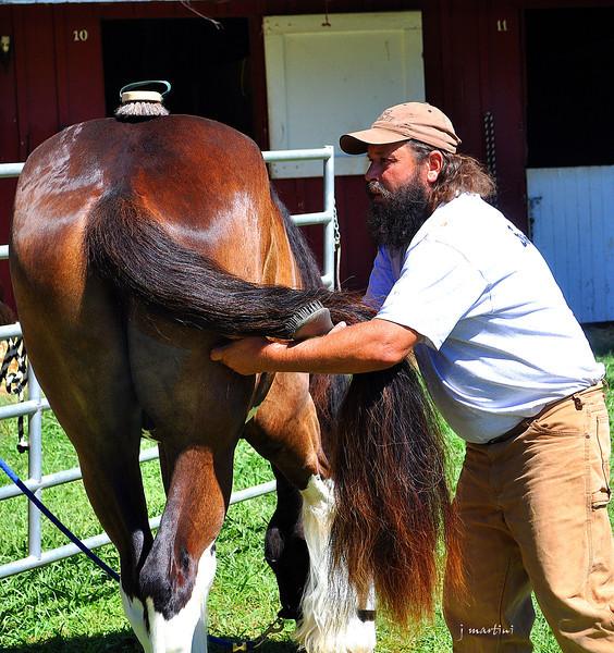 grooming station 8-17-2012.jpg