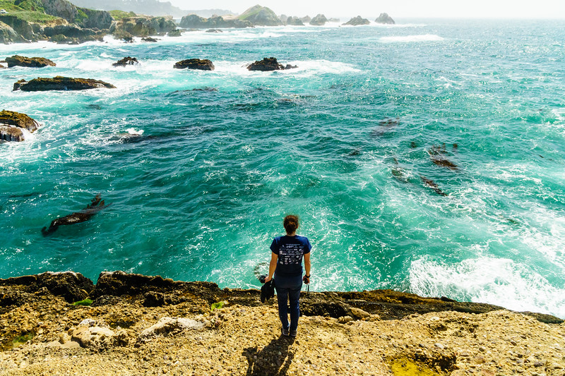 Overlooking the ocean in Point Lobos State Park near Carmel-By-The-Sea, California.