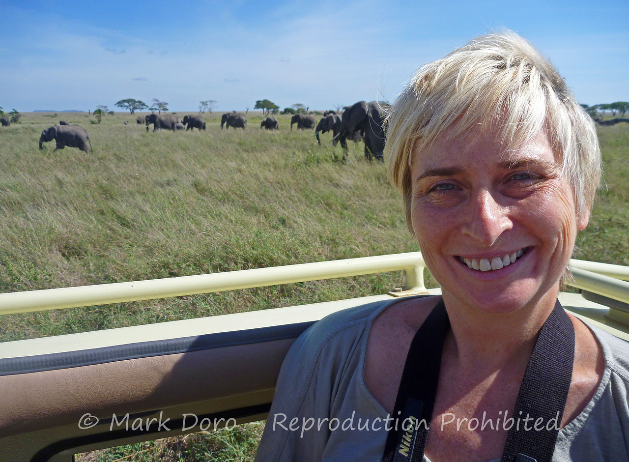 Aleta with African Elephant herd, Serengeti, Tanzania