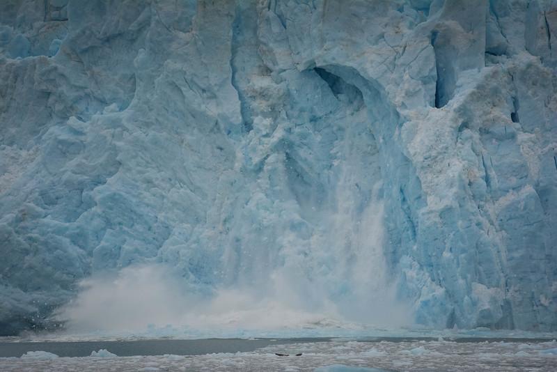 Kenai-Fjords-118.jpg