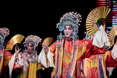 Chinese Opera Party