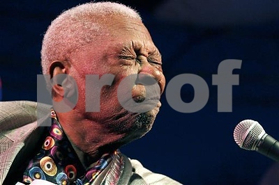 bb-king-estate-universal-sued-over-blues-legends-photos
