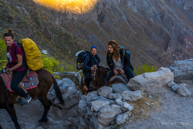 Colca Canyon-1350.jpg