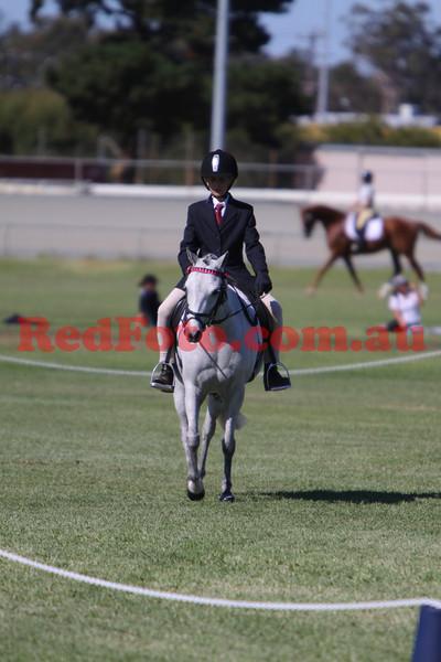 2009 05 03 Narrogin ODE Dressage All Arenas 11:54 till 13:45