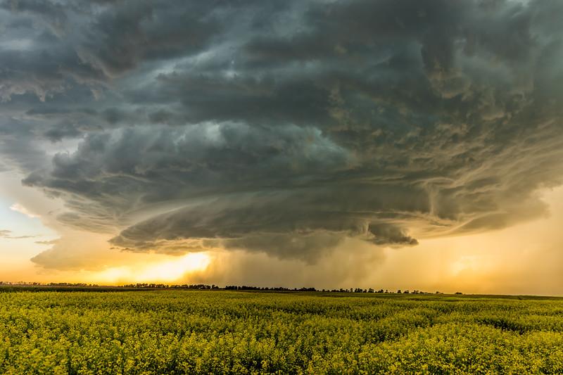 Langham Storm Cell