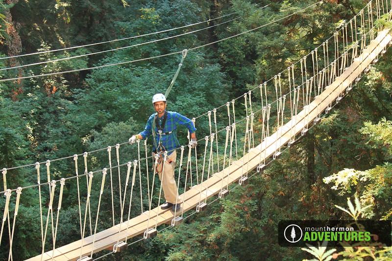redwood_bridge_1473461521295.jpg