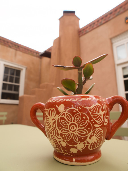 Los Poblanos- New Mexico Lavender & Organic Farm, & Historic Inn