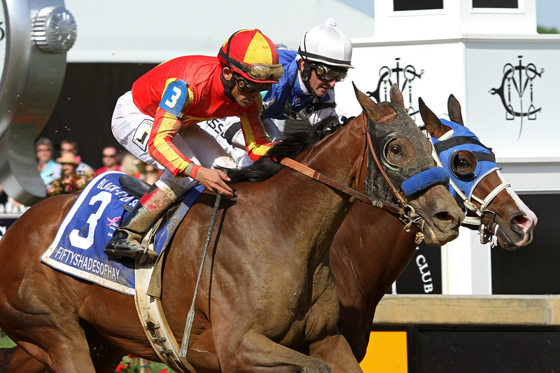 Fiftyshadesofhay (Pulpit) and jockey Joel Rosario win the Black Eyed Susan (Gr II) at Pimlico Racecourse 5/17/13. Trainer: Bob Baffert. Owner: Mike Pegram