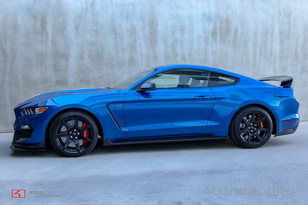 '17 Shelby GT350 R - Blue