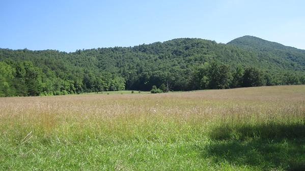 Smoky Mountain National Park July 2014