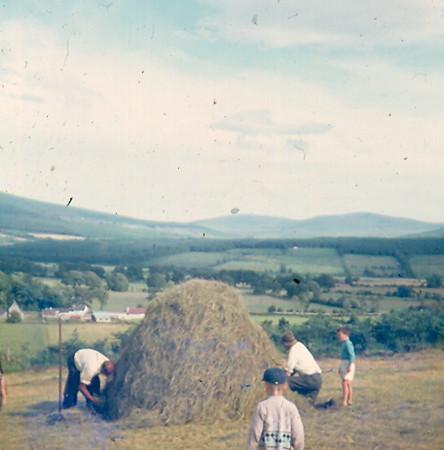 19690057.jpg