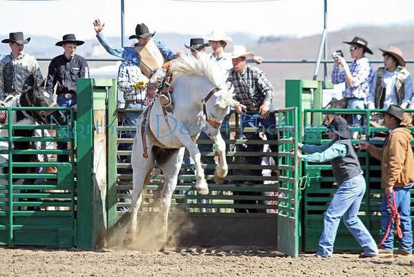 Saddle Bronc ~ Saturday