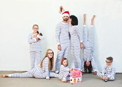 Lake Family Christmas card photo 2017