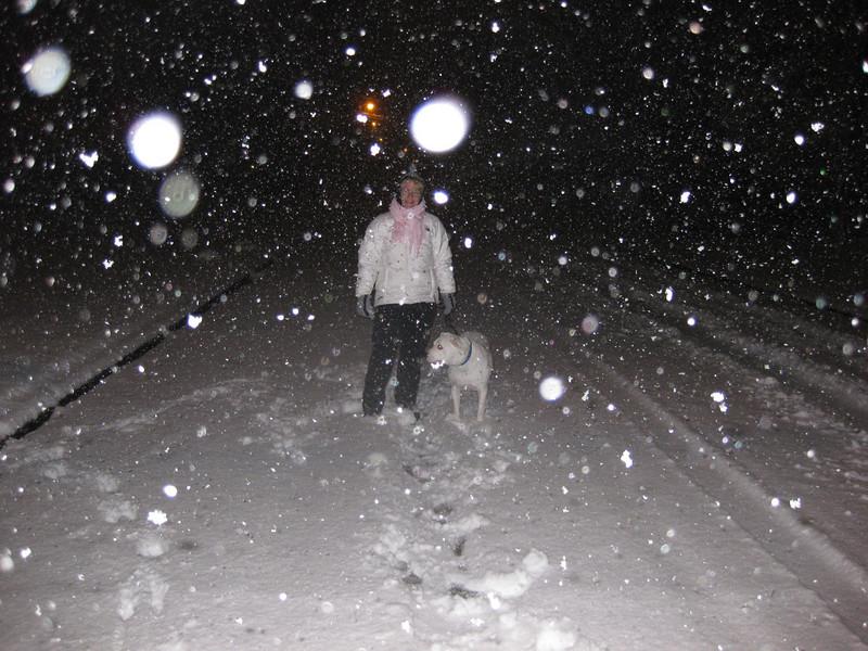 Snow in Jackson_20090228_005.JPG