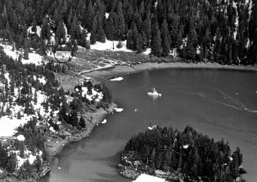 . Alaska Earthquake March 27, 1964. Chenega village site at the head of Chenega Cove in western Prince William Sound. Lower limits of snow, as shown by arrows, indicate the approximate limits of wave runup. The schoolhouse is circled. Photo by G. Plafker, March 29, 1964, U.S. Geological Survey