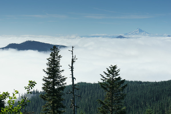 2014 July 19 - Mt St Helens Summit