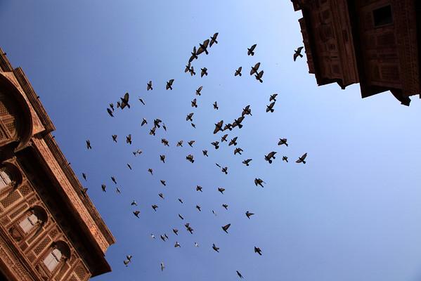 Around Mehrangarh Fort in Jodhpur
