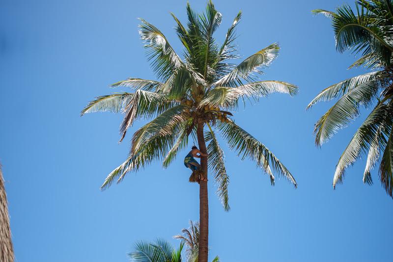 Hawaii2019-669.jpg
