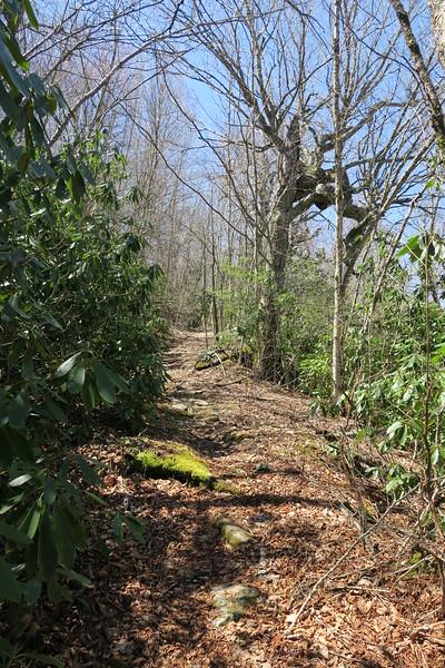 High Bethel Trail - 4,280'