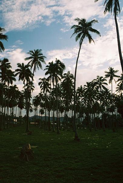 Hawaii-562.jpg