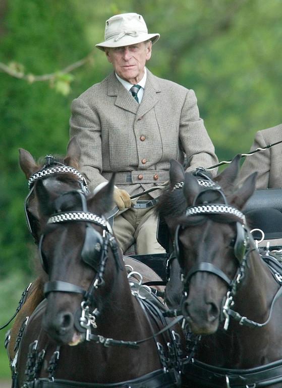 . BRITISH ROYAL PRINCE CONSORT EQUESTRIAN HORSES