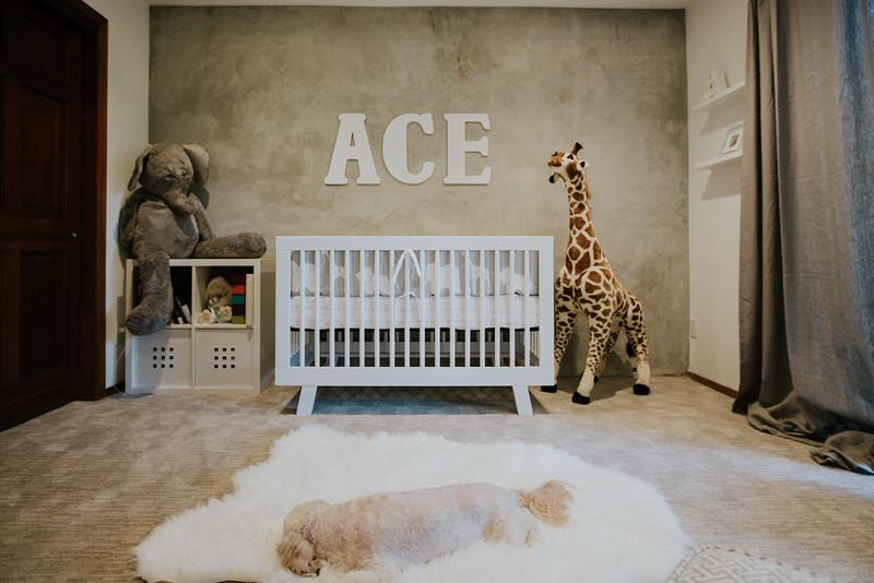 Ace_Newborn_2016-0055.jpg