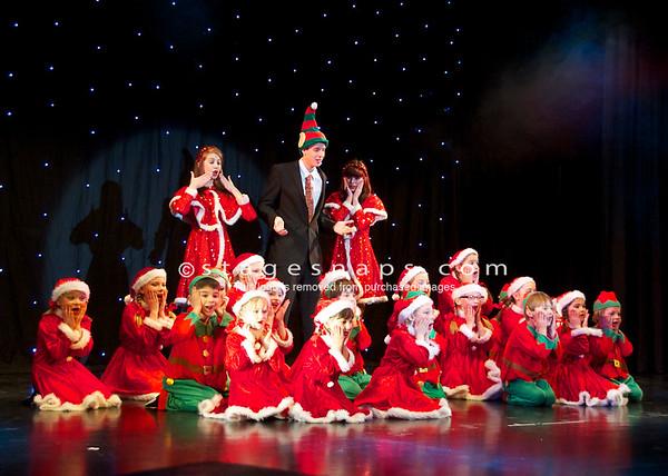 Christmas Concert (2010)