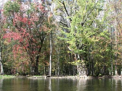 Beaver River Oct 2011