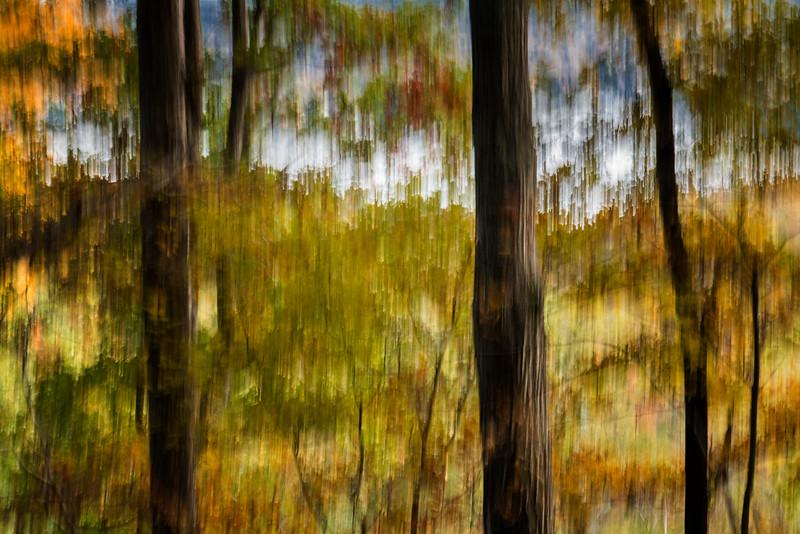 ChrisAllenImages-DMC-GX7-2014-11-08-.jpg