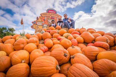Pumpkin Patch (Tanaka Farms):  October 8, 2018