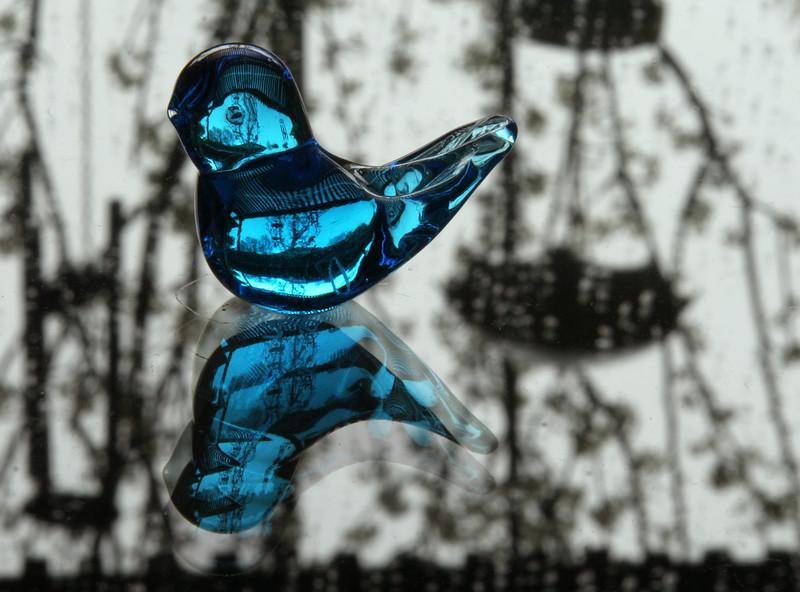 bluebird 2006.jpg