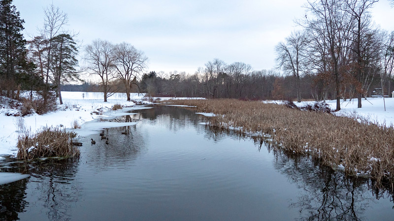 New-York-Dutchess-County-Hyde-Park-Eleanor-Roosevelt-National-Historic-Site-21.jpg