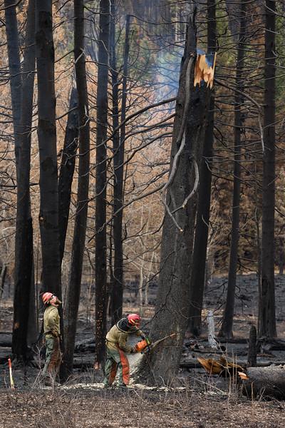 Roosevelt Fire Upper Hoback River-2.jpg
