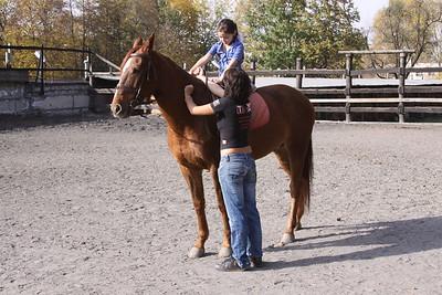 Sandra Horses and Kosta NAR