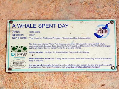 Cape Cod Whale Trail -- Summer 2006