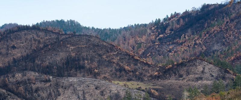 Sonoma County, California - 2017 Firestorm
