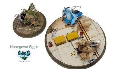 Hasegawa Eggs