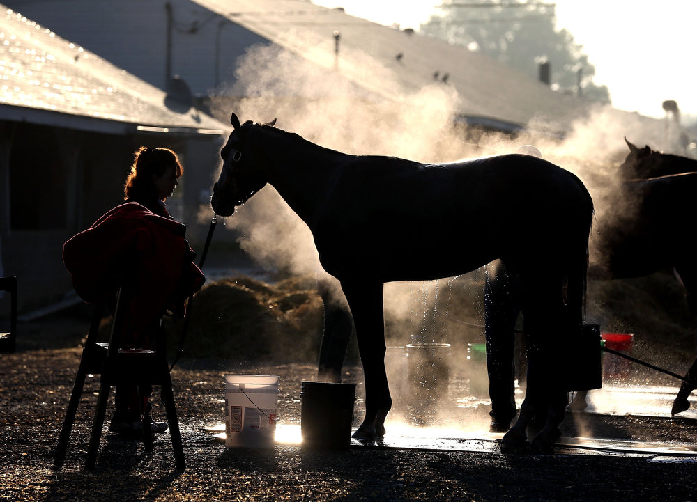 . Steam rises from a horse as it is washed in the barn area during morning training in preparation for the 2013 Kentucky Derby at Churchill Downs on April 30, 2013 in Louisville, Kentucky.  (Photo by Andy Lyons/Getty Images)