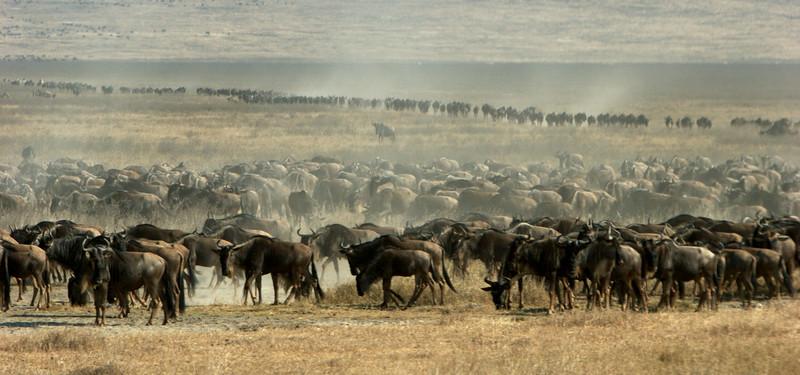 Tanzania - 23.jpg