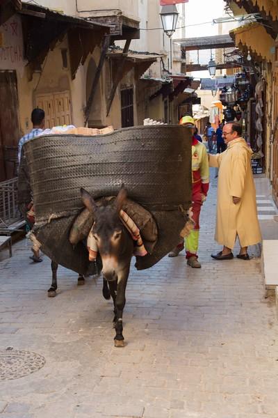 160923-031344-Morocco-9363.jpg